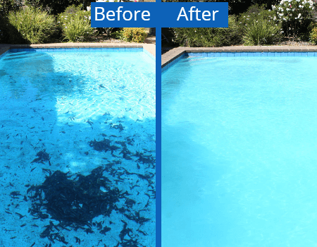 Best Pool Cleaning Company in Doral Fl